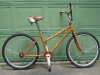086. Rodeo Bike - rickpaulos